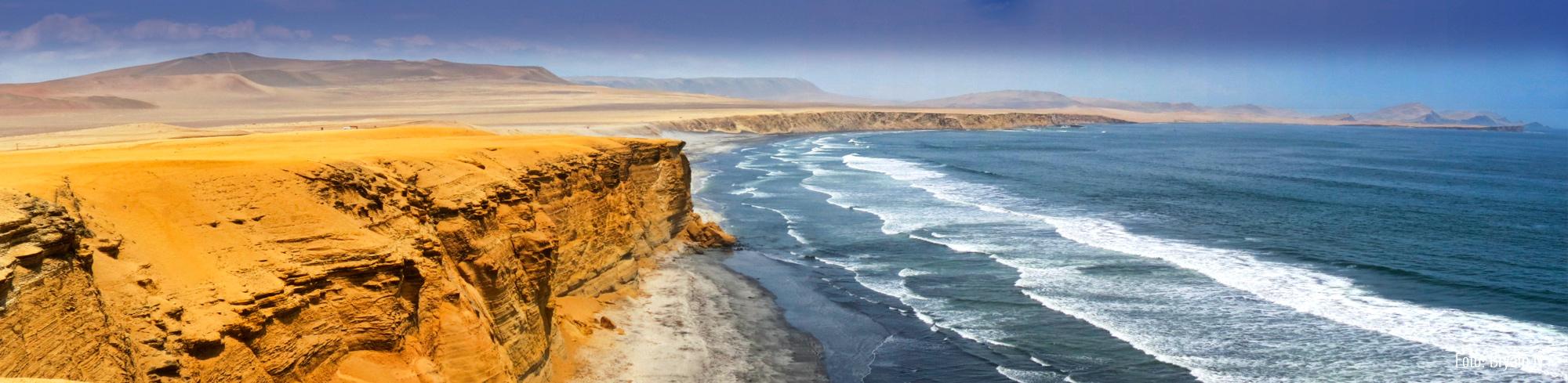 Tour Reserva Nacional de Paracas desde Chincha