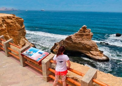 Chincha – Paracas National Reserve Tour