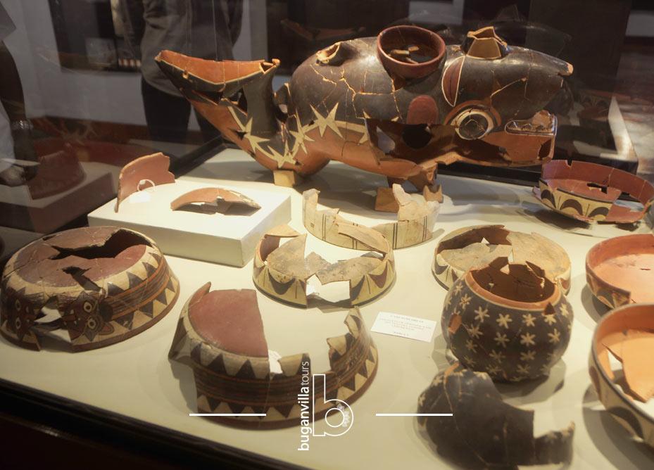Tour Museo Antonini